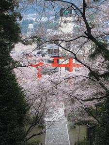 20110416-052.jpg
