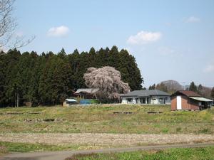 20110424-01.jpg